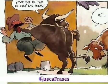 Chistes De Animales Buscafraseses