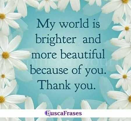 Frases bonitas de agradecimiento de amor en inglés