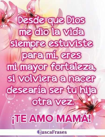 Frases de agradecimiento a una madre
