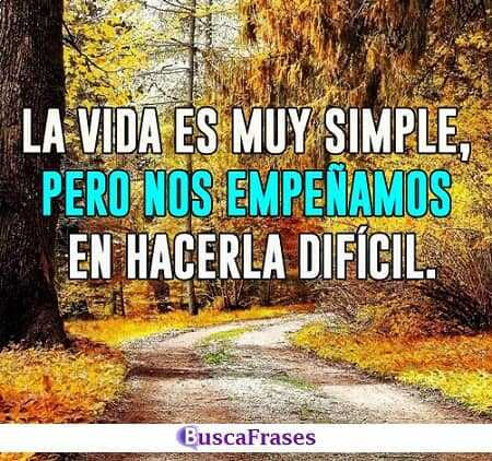 La vida es muy simple - Confucio